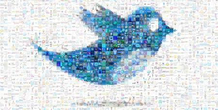 twitter bird header